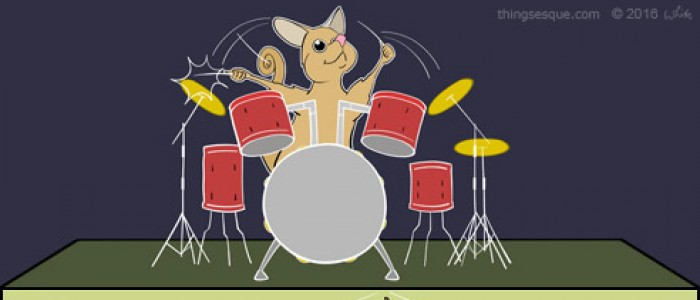 Percussion Possum